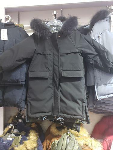 Ѳвлийн куртик