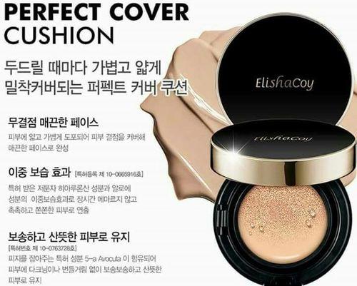 ELISHACOY perfect cover cusion