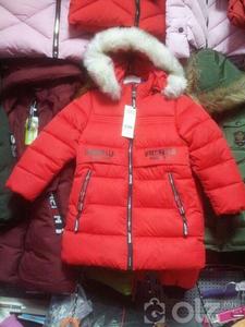 куртик охин