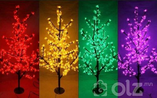 Гадаа гэрэлтэй мод