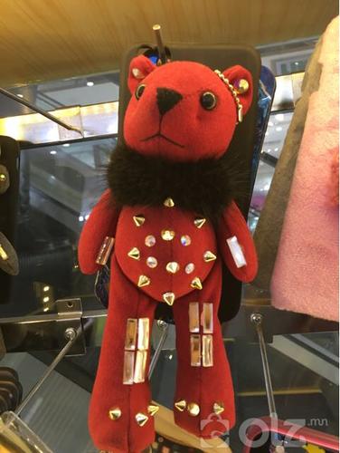 Teddy case