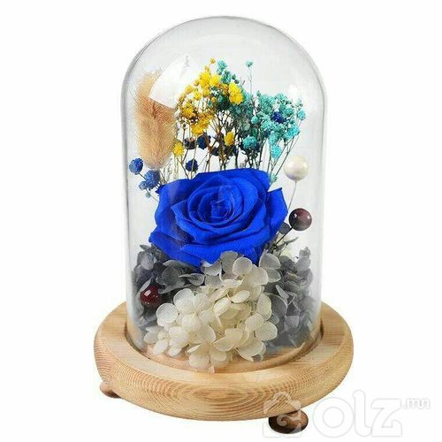 мөнхийн сарнай амьд цэцэг