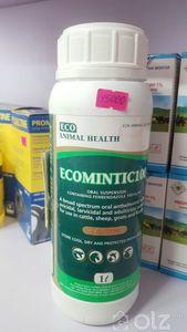 Ecomintic100